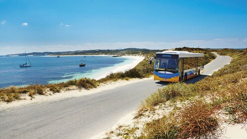 Bus along the coast of Rottnest Island