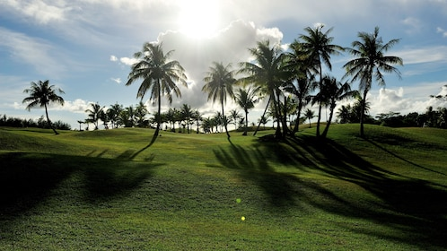 Golf course with palm trees in Guam