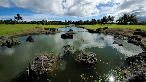 Pond on a golf course in Guam