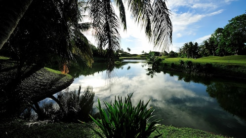 Pond and palm trees on a golf course in Guam