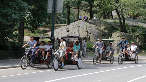 Group of pedicabs in Central Park