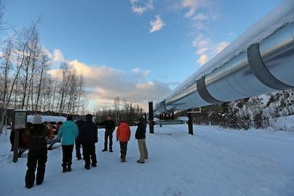 Fairbanks City Highlights Tour