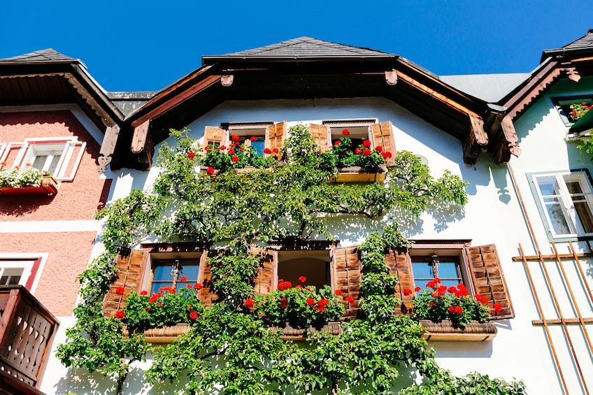 Foto 3 von 7 laden Hallstatt Day Trip from Vienna