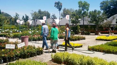 Group on the Atlixco Magical Town Tour in Puebla, Mexico