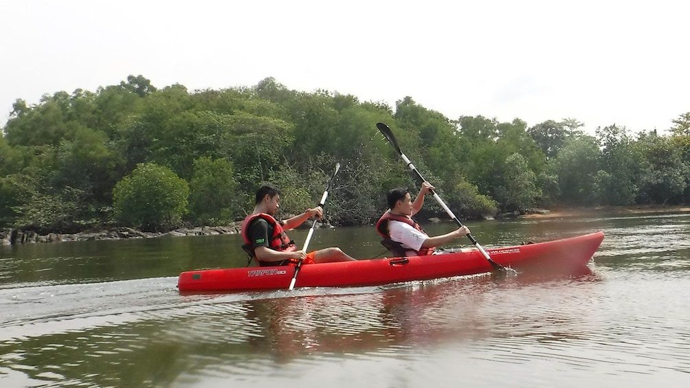 Show item 3 of 5. Two people in a kayak in Singapore