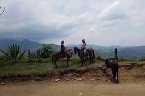 Horse Riding, Salento