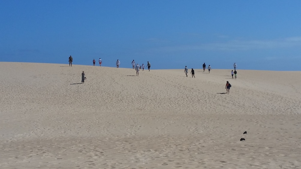 Show item 1 of 10. Small-Group Fuerteventura Sightseeing Tour