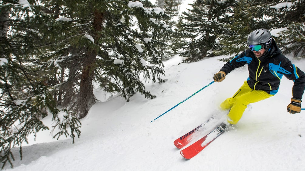 Cargar ítem 4 de 5. Person skiing downhill