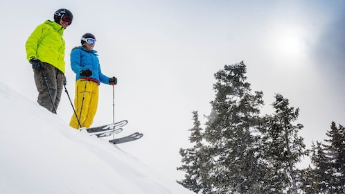 Pair of skiers on a hill