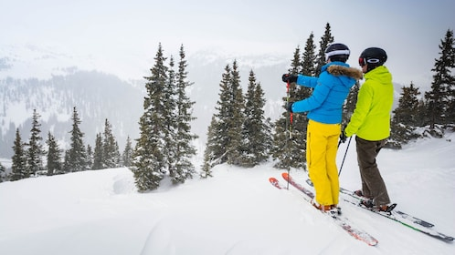 Pair of skiers on the slopes