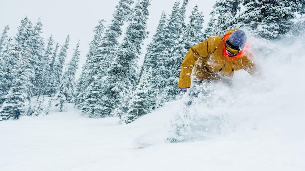Cargar ítem 4 de 5. Skier on a mountain