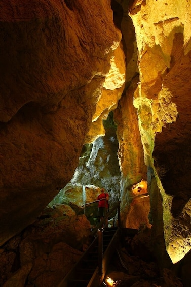 Show item 9 of 9. Guided Cathedral Cave Tour of the Capricorn Caves