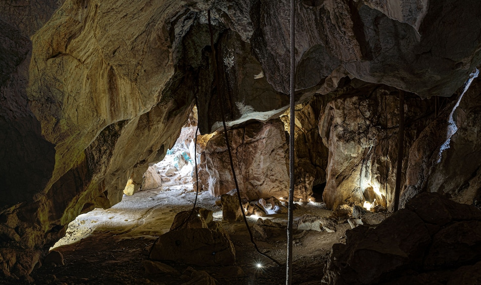 Show item 2 of 9. Guided Cathedral Cave Tour of the Capricorn Caves