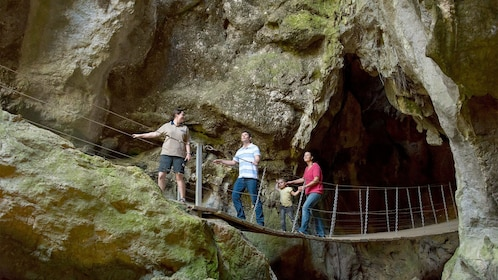 Group crossing a bridge on the Cathedral Cave Tour in Queensland Regional South, QLD, Australia