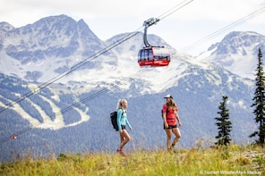 Whistler Alpine Hiking Tour - Guided