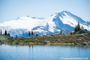 Whistler Alpine Hiking Tour - Private Guided