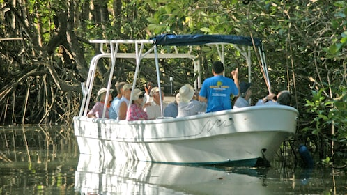 Landscape view of a tour group on a boat on the Damas Island Mangrove tour in Costa Rica