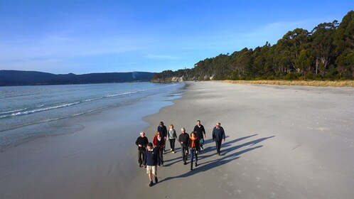 Group walking on the beach on the Gourmet Bruny Island Day Tour in Hobart and Surrounds, TAS, Australia