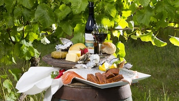 Bruny Island Gourmet Food & Wine Day Tour