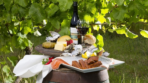 Gourmet food on plates placed on wine barrels in a vineyard