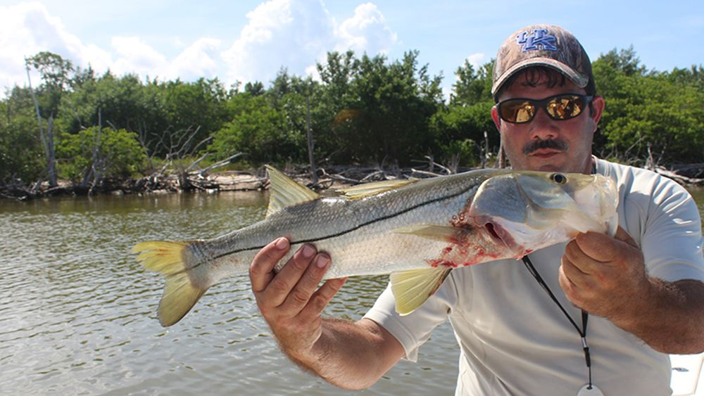 Everglades Flamingo Snook Fishing Charter .jpg