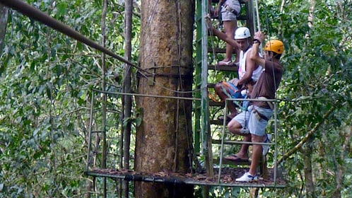Group climbing the stairs in the trees to the ziplining platform in Costa Rica