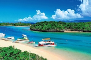 Ishigaki Island Full-Day Private Tour with Government-Licensed Guide