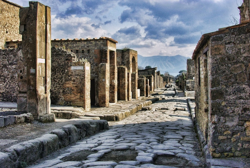 Apri foto 2 di 7. Transfer Tour: Naples Airport or Train Station to Sorrento with 2-Hour Stop in Pompeii