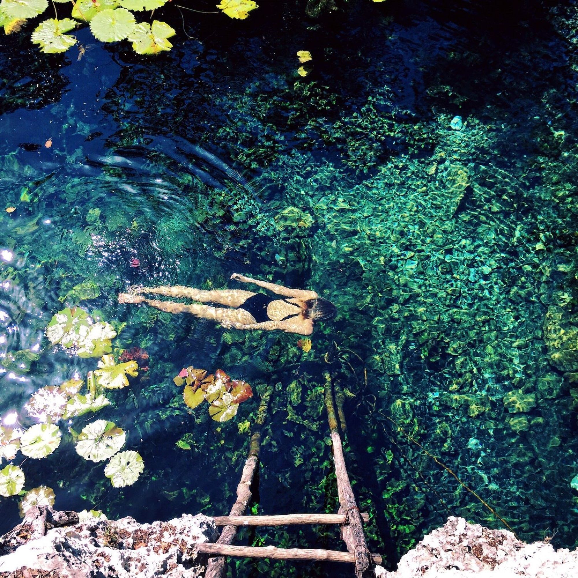 cenote nicteha 2.jpg