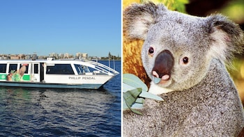 Combo: Swan River Cruise & Perth Zoo Admission