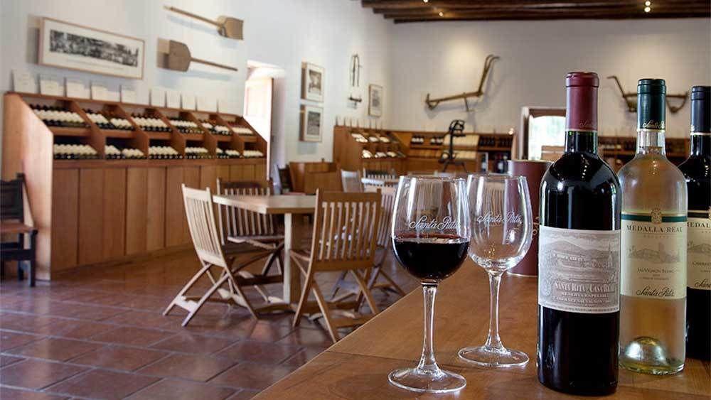Santa Rita Winery Tour with Wine Tastings