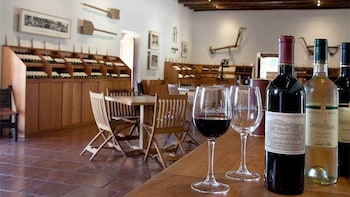 Santa Rita Winery Tour with Wine Tastings