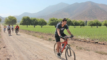 Santa Rita Winery Bike Tour