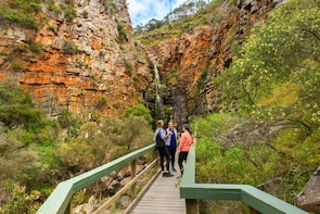 Full-Day Bushwalk, Wine & Barbecue Eco Tour from Adelaide