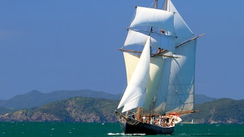 Bay of Islands Tall Ship Sailing Adventure