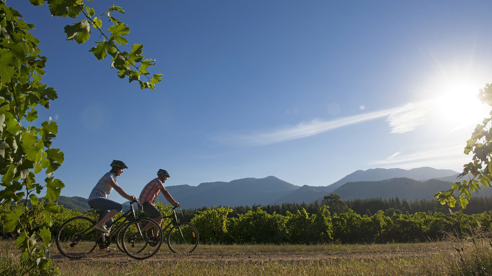 4-Day Self-Guided Winery Cycling Tour from Beechworth to Bright Farm