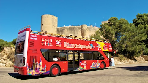 Hop on Hop off bus tour of Mallorca & Palma