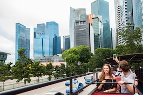 Excursie langs de kust van Singapore: hop-on, hop-off-bustour