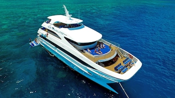 Full-Day Outer Great Barrier Reef Cruise & Snorkelling Tour