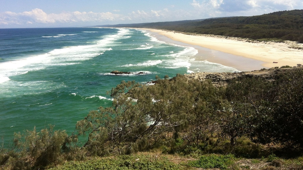 Show item 5 of 5. Sandy coast in Queensland