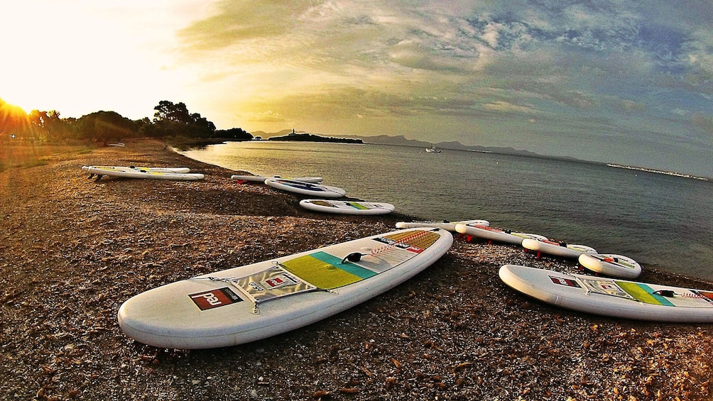Show item 3 of 5. Stand-up paddling boards on a beach on Mallorca Island