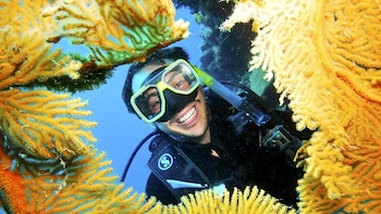 Full-Day Great Barrier Reef Snorkeling Tour