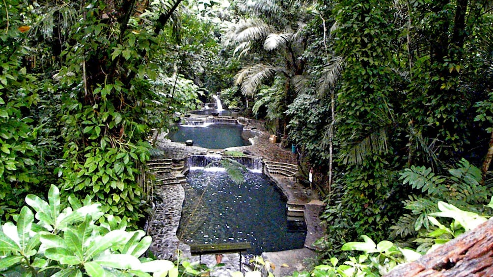 Show item 4 of 5. pools in forest in manila