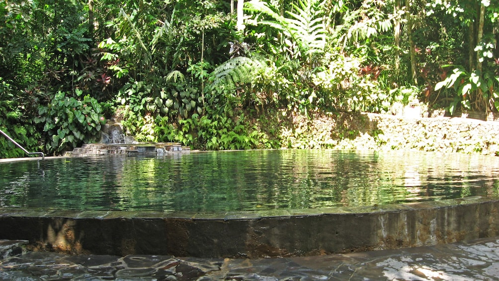Show item 5 of 5. pools in forest in manila