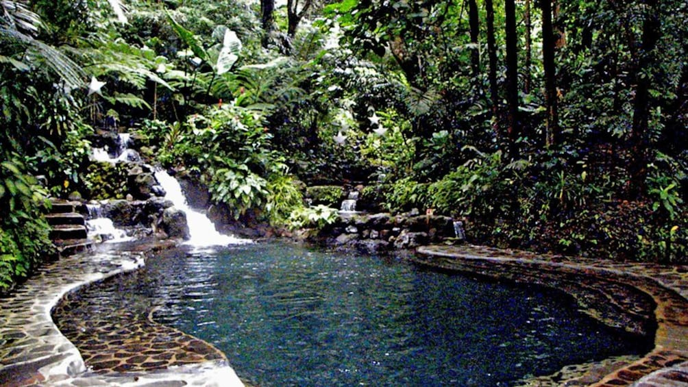 Show item 3 of 5. pools in forest in manila