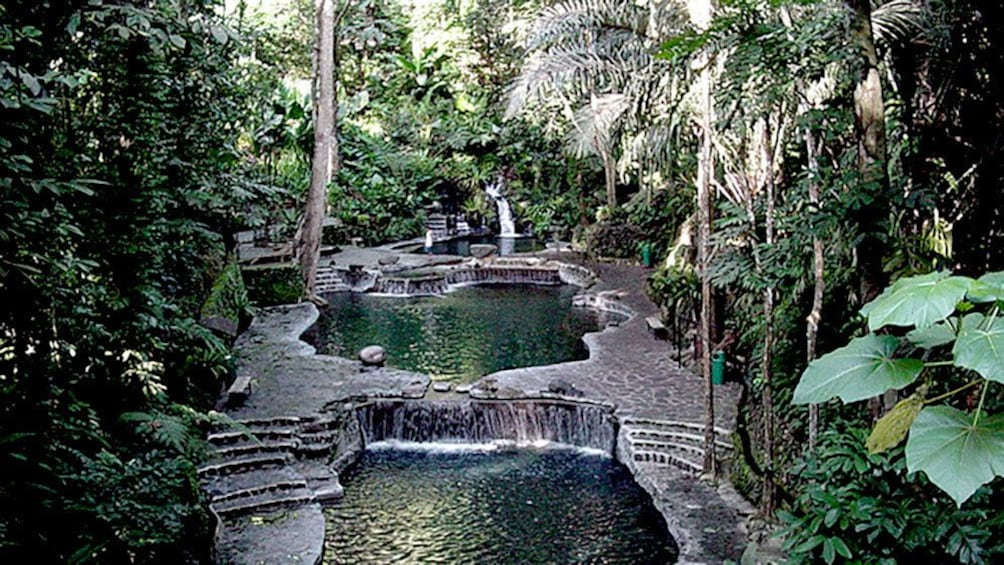 Show item 2 of 4. Jungle pools in the Philippines