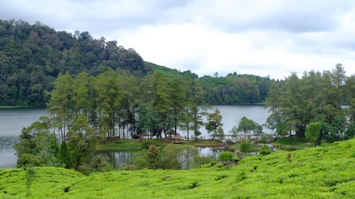 Countryside of Indonesia