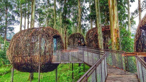 Huts in the woods in Bandung