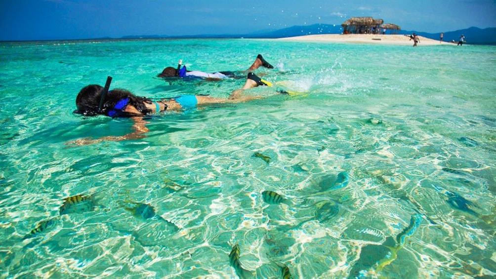 Show item 2 of 10. Snorkelers in Puerto Plata, Dominican Republic