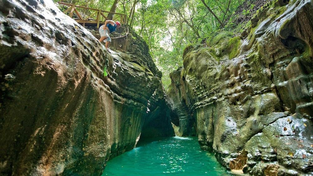 Foto 5 von 10 laden Damajagua Waterfalls tour